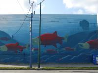Salmon mural, wall